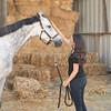 0004_Churchill Equestrian