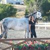 0190_Churchill Equestrian