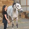 0011_Churchill Equestrian