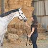 0005_Churchill Equestrian