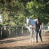 0177_Churchill Equestrian