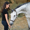 0053_Churchill Equestrian