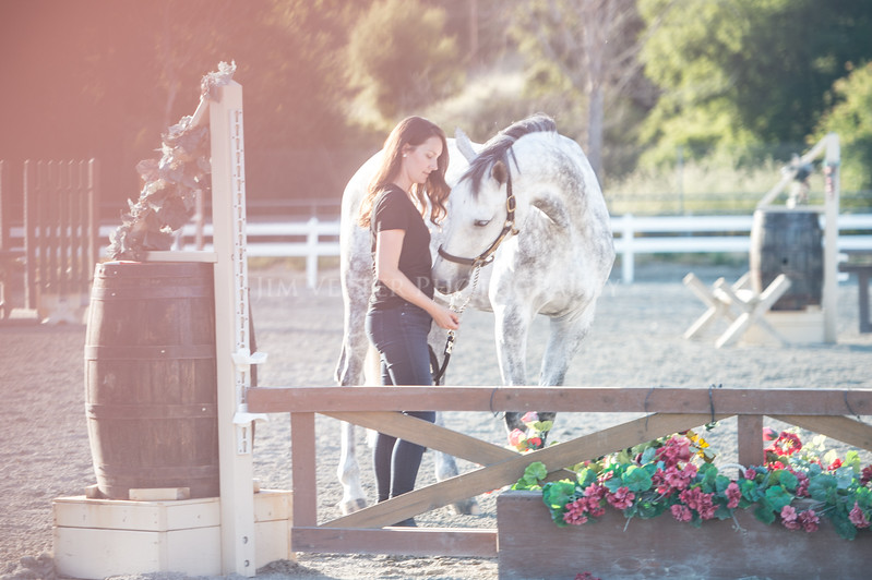 0186_Churchill Equestrian