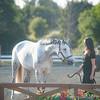 0182_Churchill Equestrian