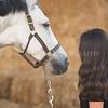 0007_Churchill Equestrian