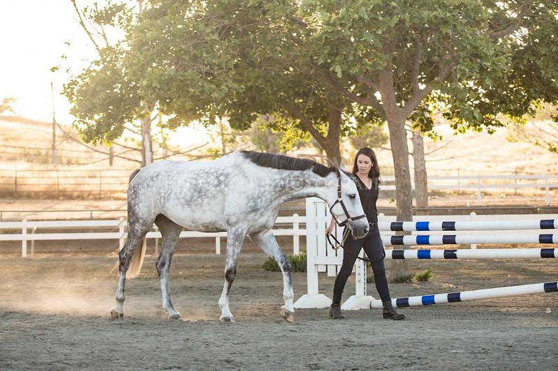 0252_Churchill Equestrian
