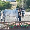 0197_Churchill Equestrian