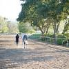 0170_Churchill Equestrian