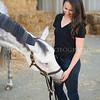 0058_Churchill Equestrian