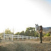 0181_Churchill Equestrian