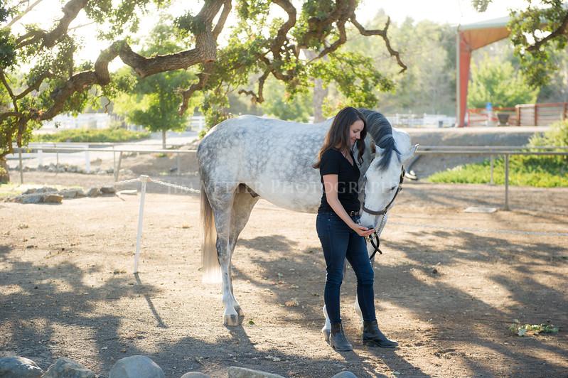 0134_Churchill Equestrian