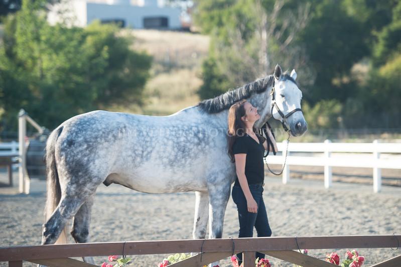 0193_Churchill Equestrian