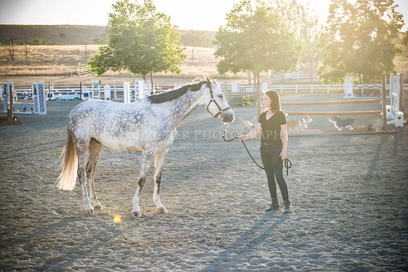 0255_Churchill Equestrian
