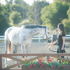 0184_Churchill Equestrian