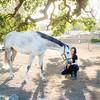 0165_Churchill Equestrian
