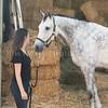 0003_Churchill Equestrian