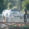 0183_Churchill Equestrian