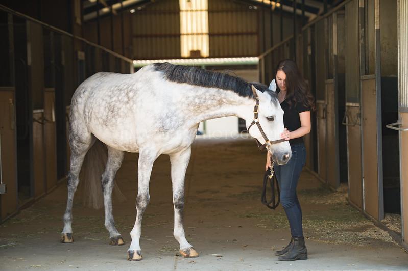 0078_Churchill Equestrian