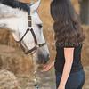 0006_Churchill Equestrian