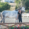 0191_Churchill Equestrian