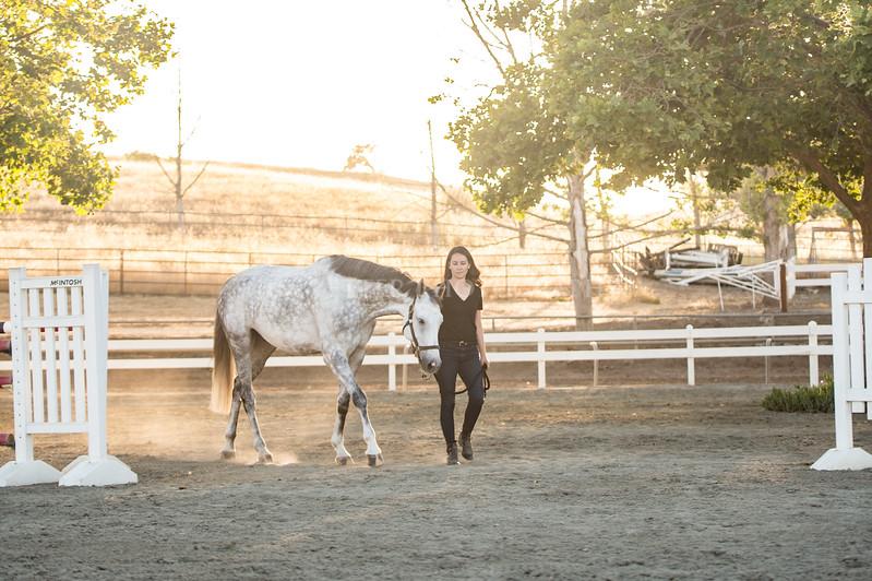 0249_Churchill Equestrian