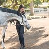 0161_Churchill Equestrian