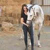 0014_Churchill Equestrian