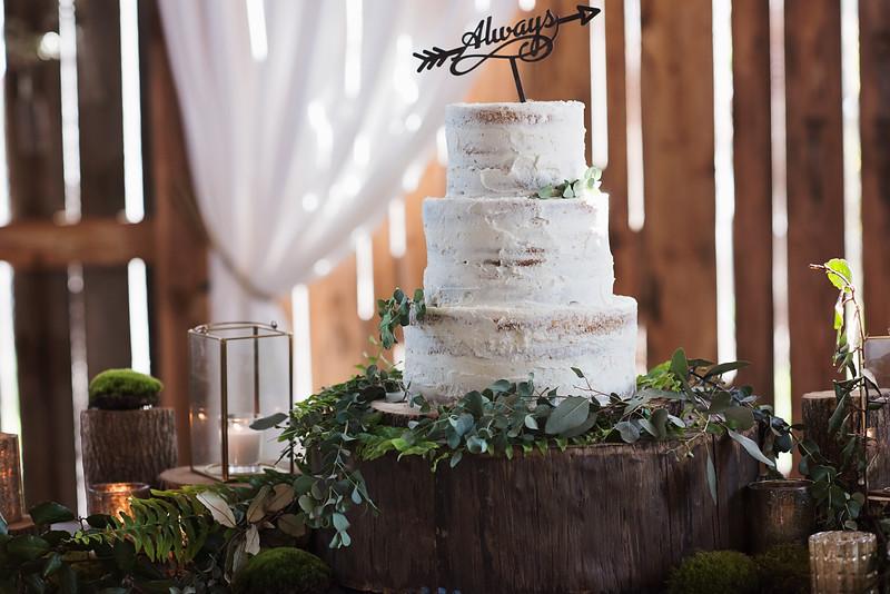 2018-Josh-and-Brittany-Wedding-261