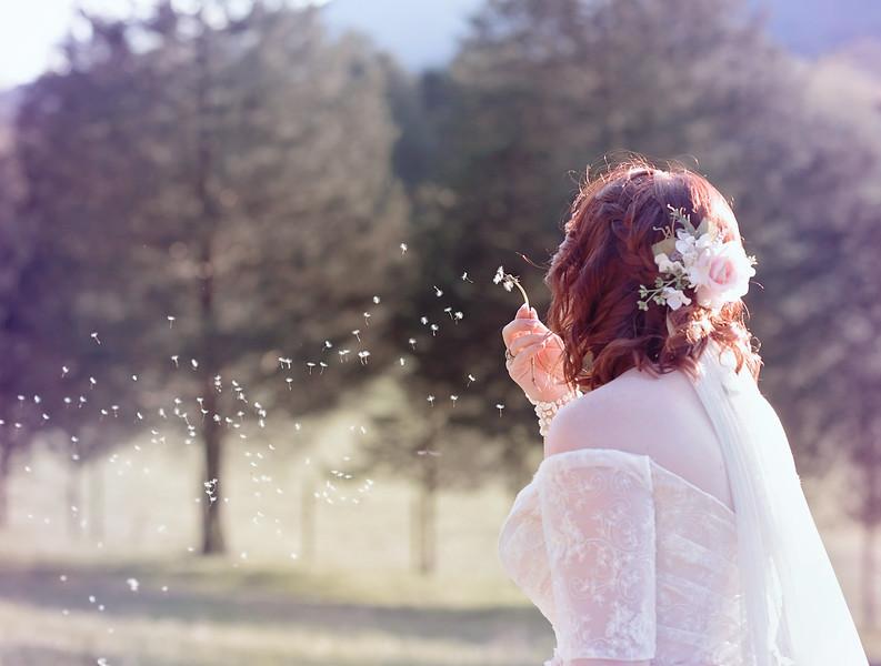 2018-Josh-and-Brittany-Wedding-429