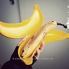 March 4, 2010<br /> <br /> It's one of those days, yanno, when your banana just doesn't fit in your banana case. <br /> <br /> No comment.