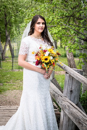 wlc Abi Bridals228May 26, 2017-Edit