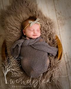 wlc Baby Girl Addi1342020-Edit