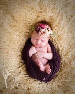 wlc Baby Girl Addi1482020-Edit