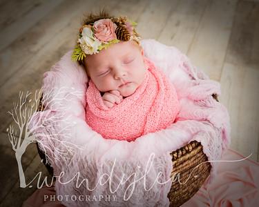 wlc Baby Girl Addi642020-Edit