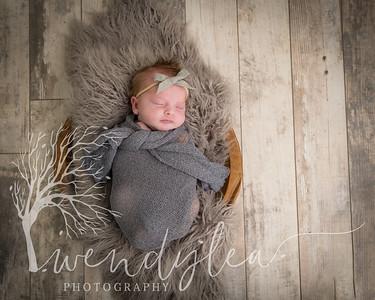 wlc Baby Girl Addi1462020-Edit