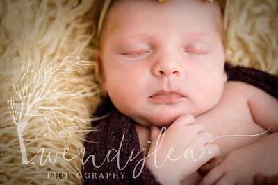 wlc Baby Girl Addi1702020-Edit