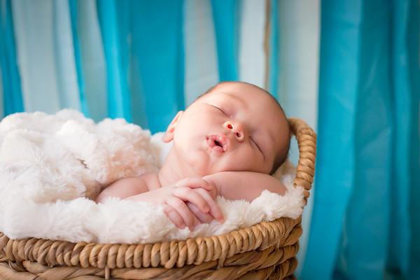 Alesso {Newborn}