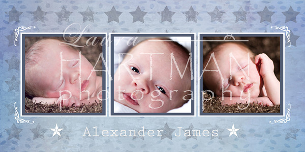 Baby Alex Collage