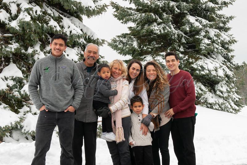 Family 17