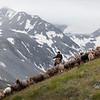 We encountered a shepherd as we hiked along the ridge