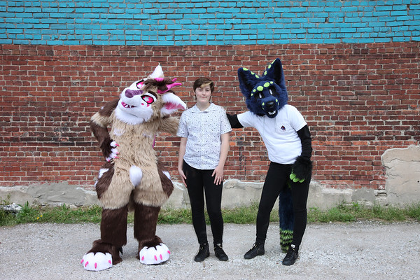 Furry Party