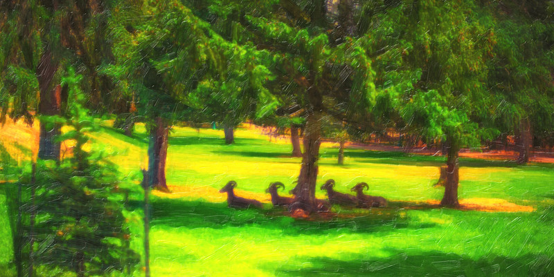 sheep under tree oil painting