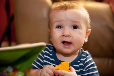 ashton, 8 months
