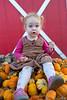 The Pumpkin Farmer