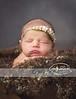 huntsvilles best newborn photographer