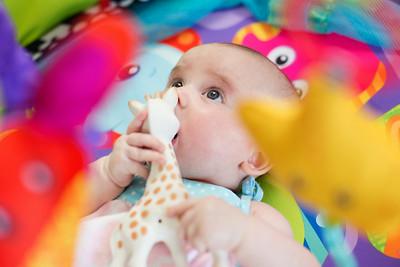 20140717 Baby Aria 011