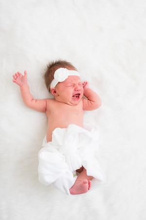 wlc Baby Boston1312017