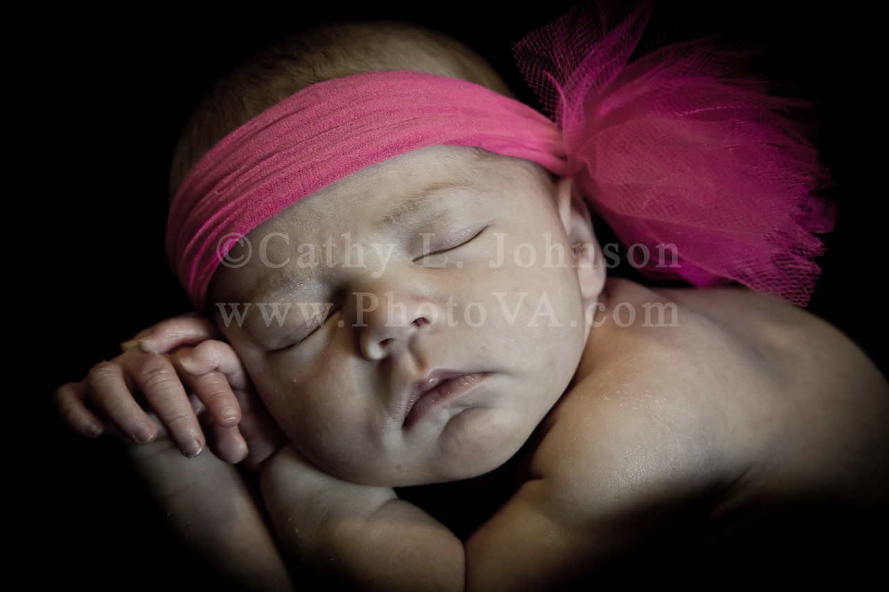 Newborn Portrait Photography - Moyock, North Carolina