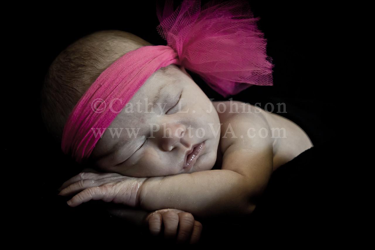 Newborn Portrait Photography - Moyock, North Carolina