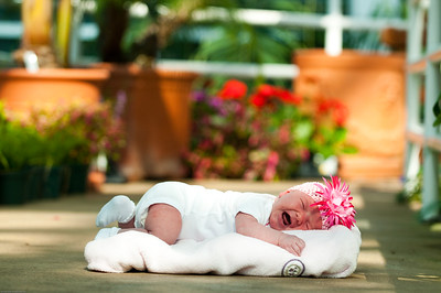 Pinner Baby-123